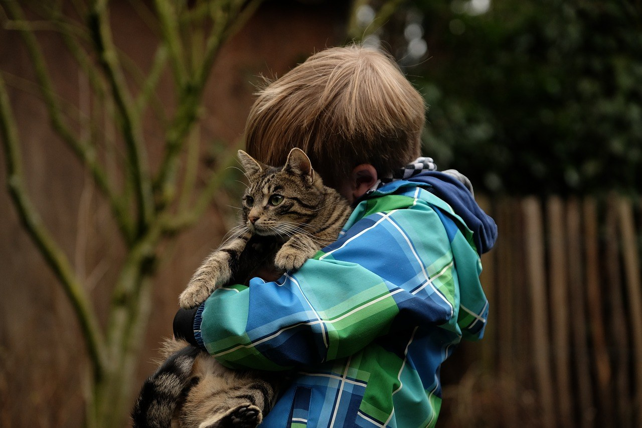 chores for kids with cats